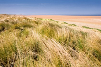Beach dunes and marram grass at Holkham in Norfolk