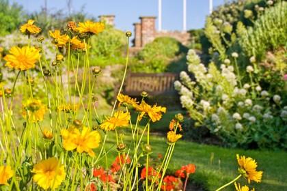 cromer-gardens
