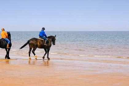 Horseriding on Holkham beach