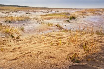 holme-beach