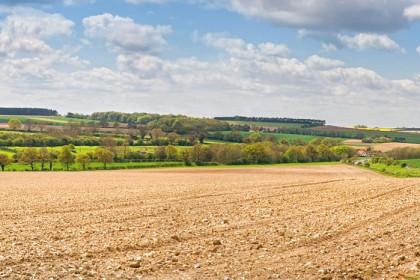 peddars-way-fields