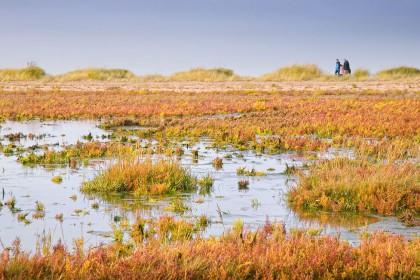 peddars-way-holme-next-the-sea